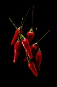 Red Hot Chilliの写真素材 [FYI00787023]
