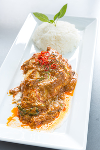 Red Curry chicken riceの写真素材 [FYI00787054]