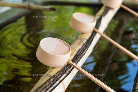 Japanese Purification Fountain in Shinto Templeの素材 [FYI00787160]