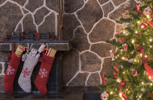 Christmas stockings and treeの写真素材 [FYI00787719]