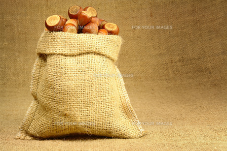 Hazelnut in Bagの素材 [FYI00788010]