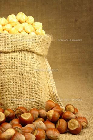 Hazelnut in Bagの素材 [FYI00788044]