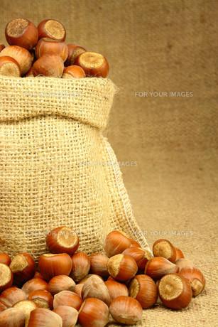 Hazelnut in Bagの素材 [FYI00788045]