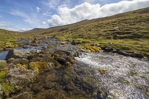 small mountain streamの写真素材 [FYI00789233]
