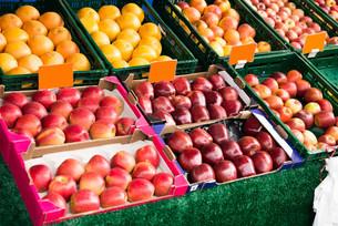 Fresh Fruits In Marketの写真素材 [FYI00789569]