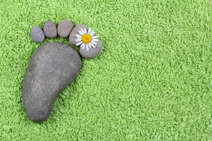footprint made of stones with chamomile flowersの写真素材 [FYI00789810]