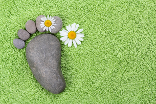 footprint made of stones with chamomile flowersの写真素材 [FYI00789824]