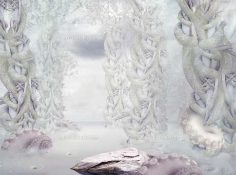Mystery. Surrealistic Mysterious White Forestの素材 [FYI00789940]