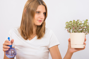 She considers the potted plants before humidificationの写真素材 [FYI00790304]