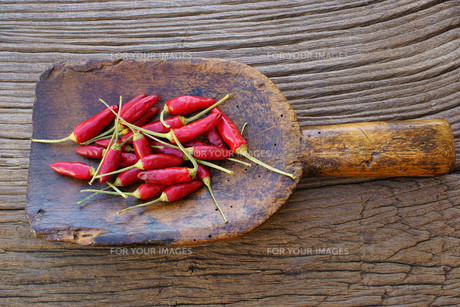 small chili peppers on ancient spice shovelの素材 [FYI00790564]