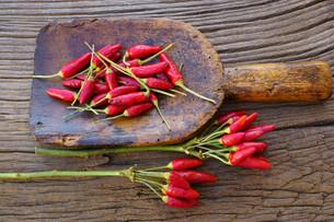 ingredients_spicesの素材 [FYI00790571]