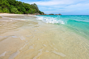 Beach and waves at Similan National Park in Thailandの写真素材 [FYI00790985]