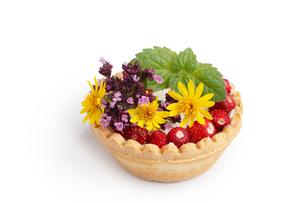 Dessert with wild berriesの写真素材 [FYI00791372]