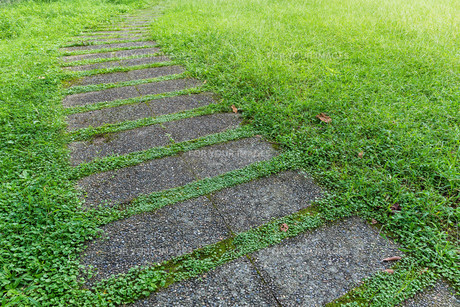 Stone way in green grassの写真素材 [FYI00791697]
