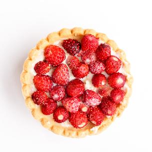 Dessert with wild strawberriesの写真素材 [FYI00791755]