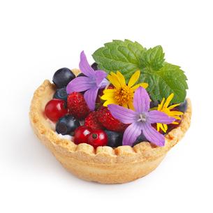 Dessert with wild berriesの写真素材 [FYI00791765]