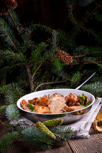 pork tenderloin with chanterelle sauceの写真素材 [FYI00792391]
