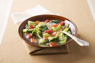 Vegetable stewの写真素材 [FYI00794110]