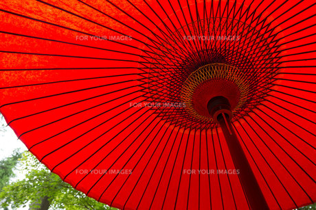 Traditional paper red umbrellaの写真素材 [FYI00794571]