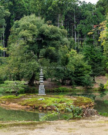 Japanese Gardenの写真素材 [FYI00794591]