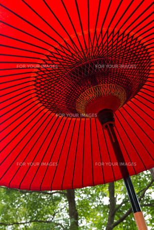 Japan traditional red umbrellaの写真素材 [FYI00794595]