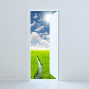 door open to beauty green fieldの写真素材 [FYI00794799]