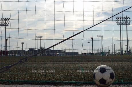 サッカー場とボールの写真素材 [FYI00795019]