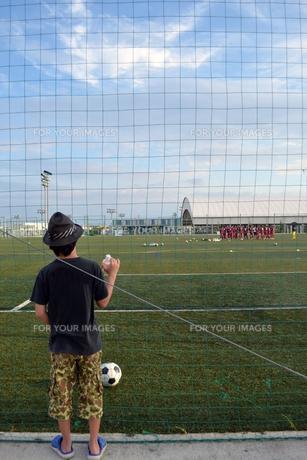サッカー場の少年の写真素材 [FYI00795020]