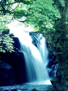 滝の写真素材 [FYI00795041]