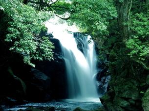 滝の写真素材 [FYI00795042]