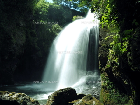 滝の写真素材 [FYI00795046]