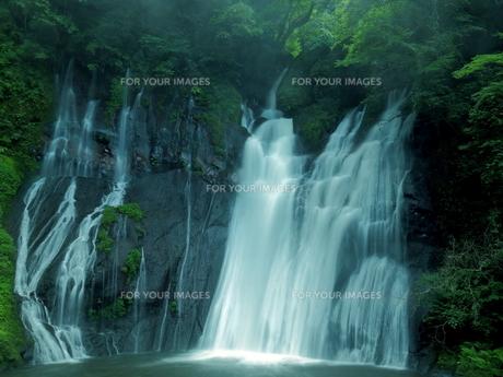 滝の写真素材 [FYI00795047]