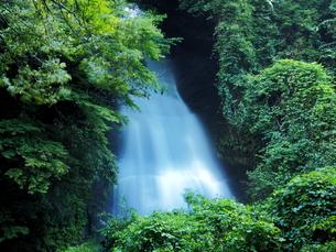 滝の写真素材 [FYI00795048]