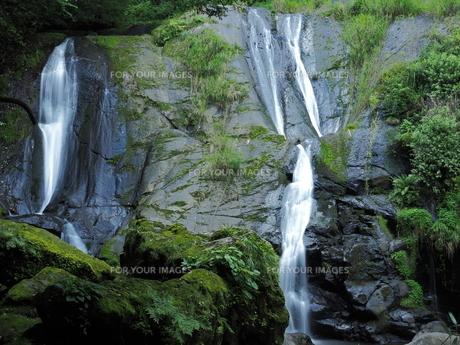 滝の写真素材 [FYI00795050]