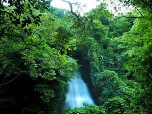 滝の写真素材 [FYI00795051]