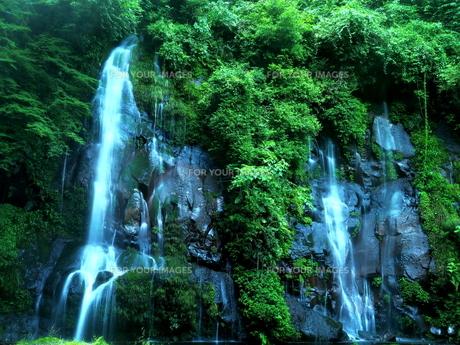 滝の写真素材 [FYI00795052]