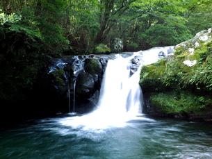 滝の写真素材 [FYI00795054]