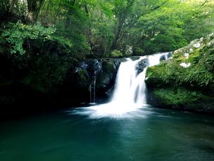 滝の写真素材 [FYI00795055]