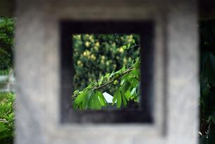 燈篭とそこから見える世界の写真素材 [FYI00795232]