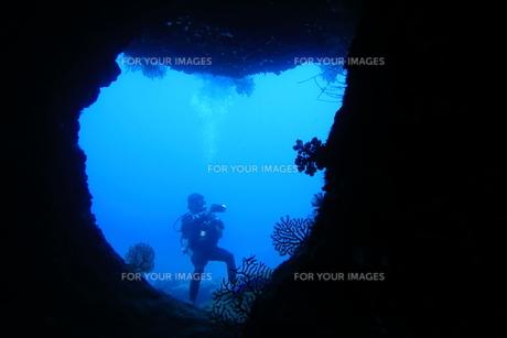 洞窟内で写真撮影するダイバーの写真素材 [FYI00795297]