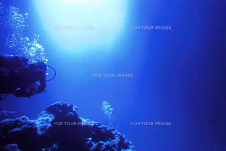 海中を泳ぐダイバーの写真素材 [FYI00795304]