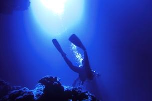 海中を泳ぐダイバーの写真素材 [FYI00795306]