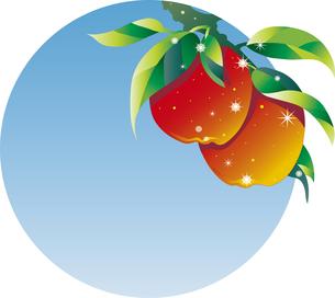 りんごの背景のイラスト素材 [FYI00795354]