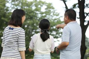 親子親子3人の後ろ姿の写真素材 [FYI00795588]