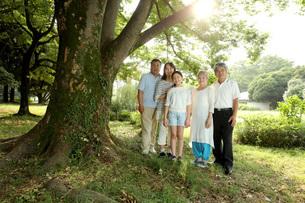 3世代家族と木の写真素材 [FYI00795592]