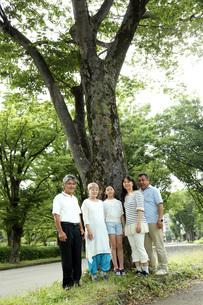 大きな木の前での写真素材 [FYI00795601]