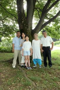 大きな木の下での写真素材 [FYI00795613]