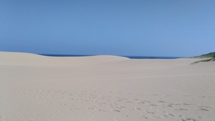 砂の足跡の写真素材 [FYI00796139]