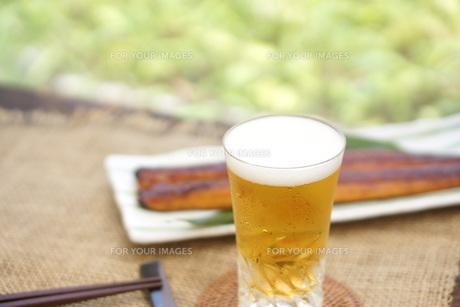 ビールとうなぎの写真素材 [FYI00796189]