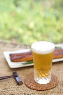 ビールとうなぎの写真素材 [FYI00796192]